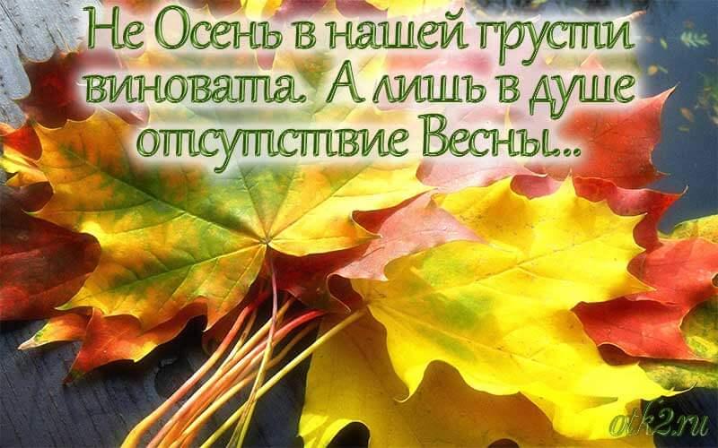 Осенью дарите тепло своим близким